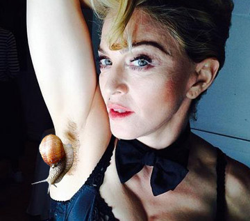 madonna-armpit-escargot