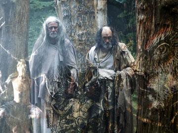 druids - cernunnos