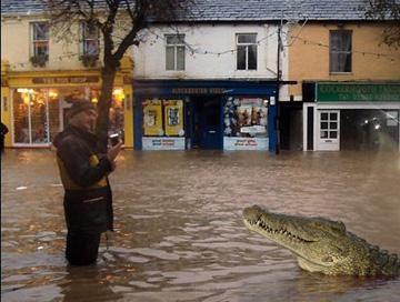 crocodile_cockermouth-main-st-at-3-00