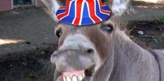 Donkey Britain eu referendum
