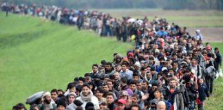 eu migrants