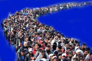 immigration train eu migrants