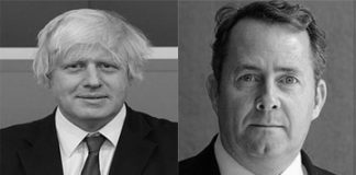 2016 conservative leadership contest