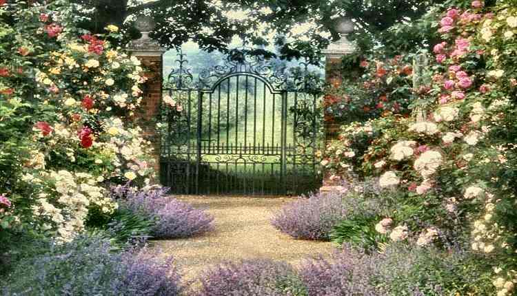 English country garden
