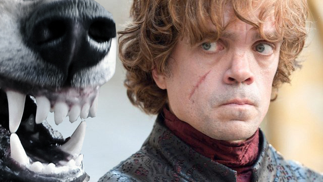 tyrion-lanister-wolf-Game of Thrones