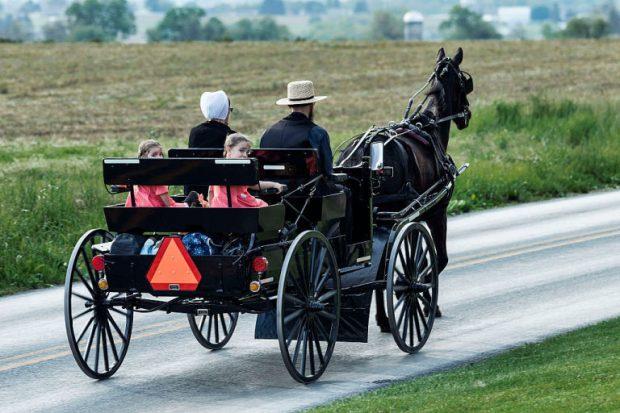 Amish horse drawn cart
