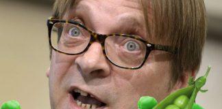 Guy-Verhofstadt-peas