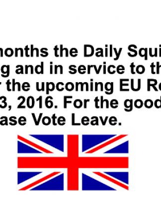 daily squib eu referendum war footing