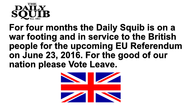 daily squib eu referendum war footing