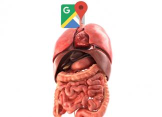 human_internal_organs_3d_google maps