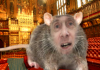 House-of-Lords-filthy-sewer-rat