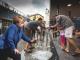 Chancellor Merkel Migrants Washing Berlin Train Station