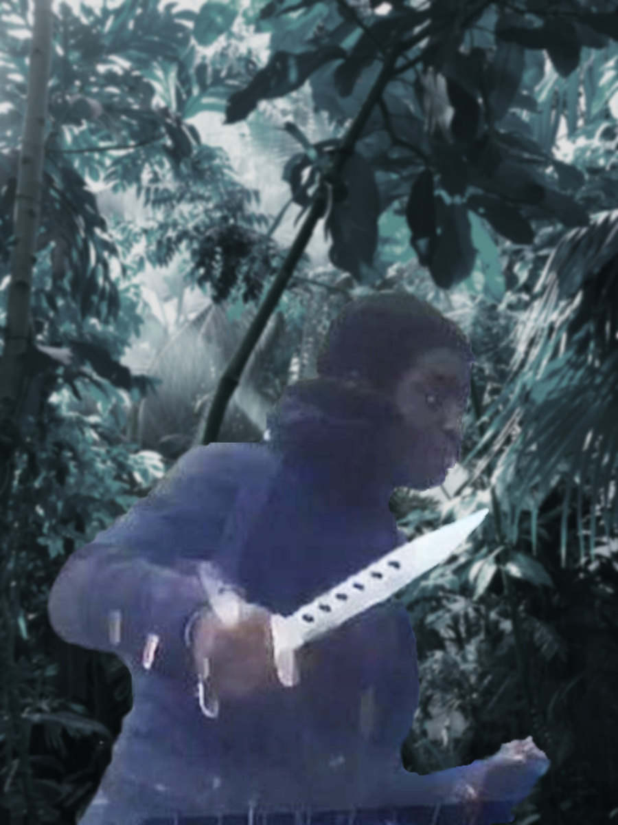 Croydon zombie knife