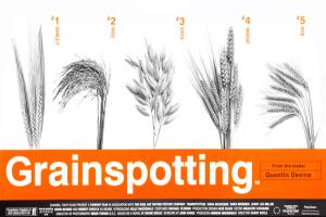 Grainspotting-q4nobody-b3ta