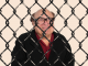 celebrities in cages danny devito