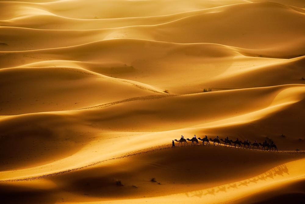 Camel Caravan heatwave england