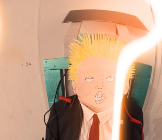 Trump eco electric chair