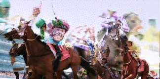 horse rac