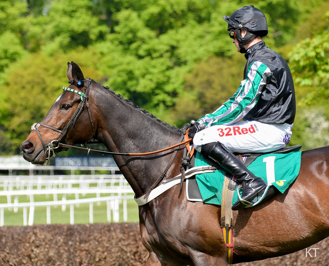 """""""Altior put his unbeaten record on the line"""" (CC BY-SA 2.0) by Carine06"""