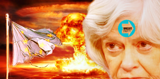 ann widdecombe brexit party