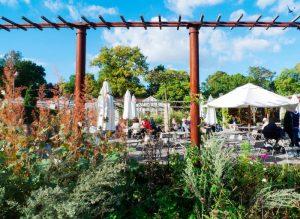 Rosendhals garden cafe