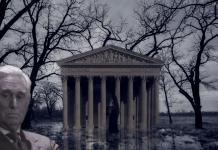 Washington-DC-Swamp-roger stone-innocent