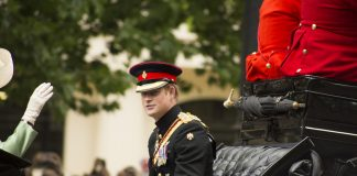 Prince Harry in carriage