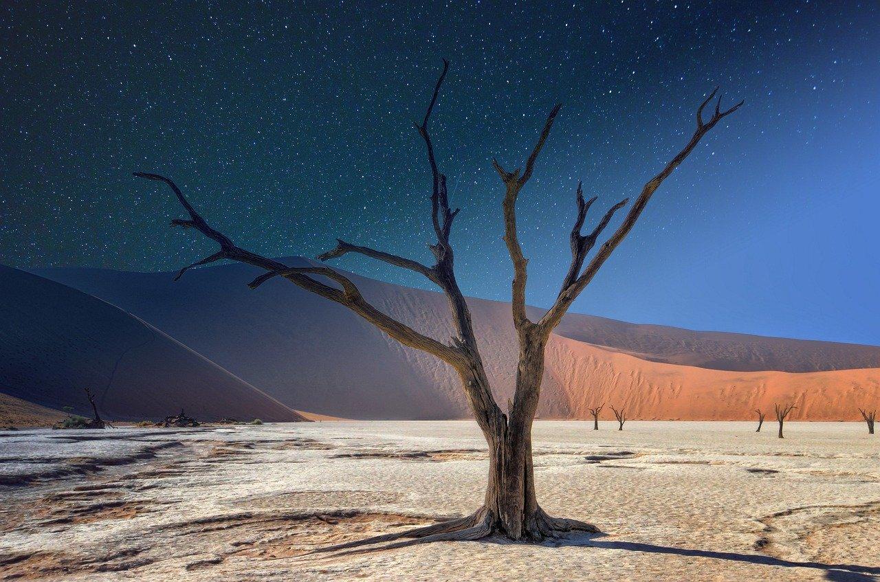 namibia-4820682_1280