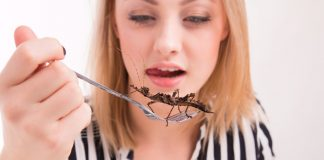 Woman eating insects