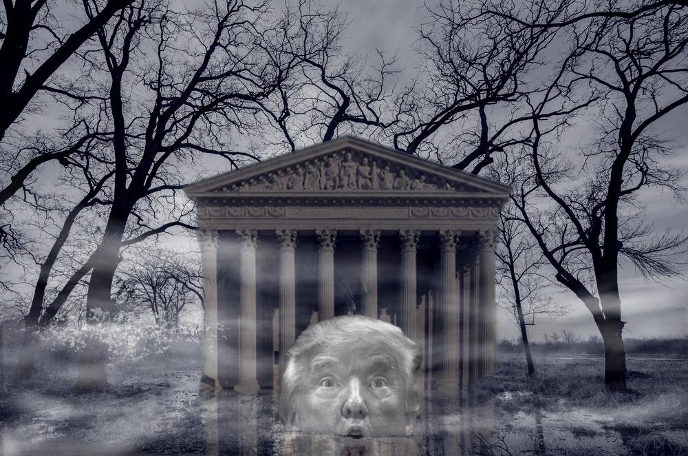 Trump Swamp