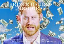 prince harry memoir