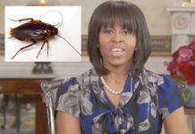michelle obama cockroach